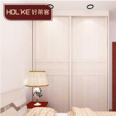 好莱客(HOLIKE)现代时尚风移门