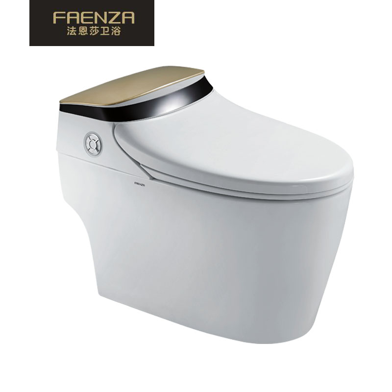 法恩莎FAENZA高端智能马桶 柔光照明 喷头自洁 座圈加温 妇洁 简约时尚FB16165M